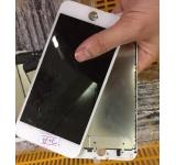 Màn hình iPhone 7 Plus Zin bể kính