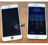 Màn hình iPhone 7G, 8G Zin bể kính